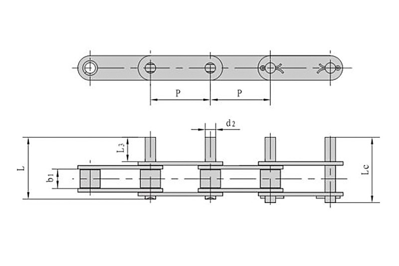 Double pitch conveyor chains with extended pins