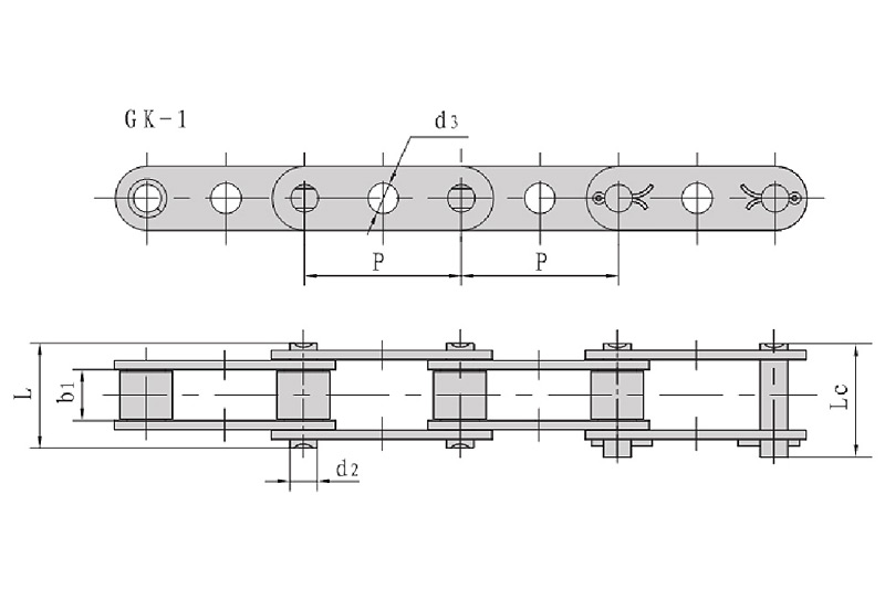 Double pitch conveyor chains with central holes