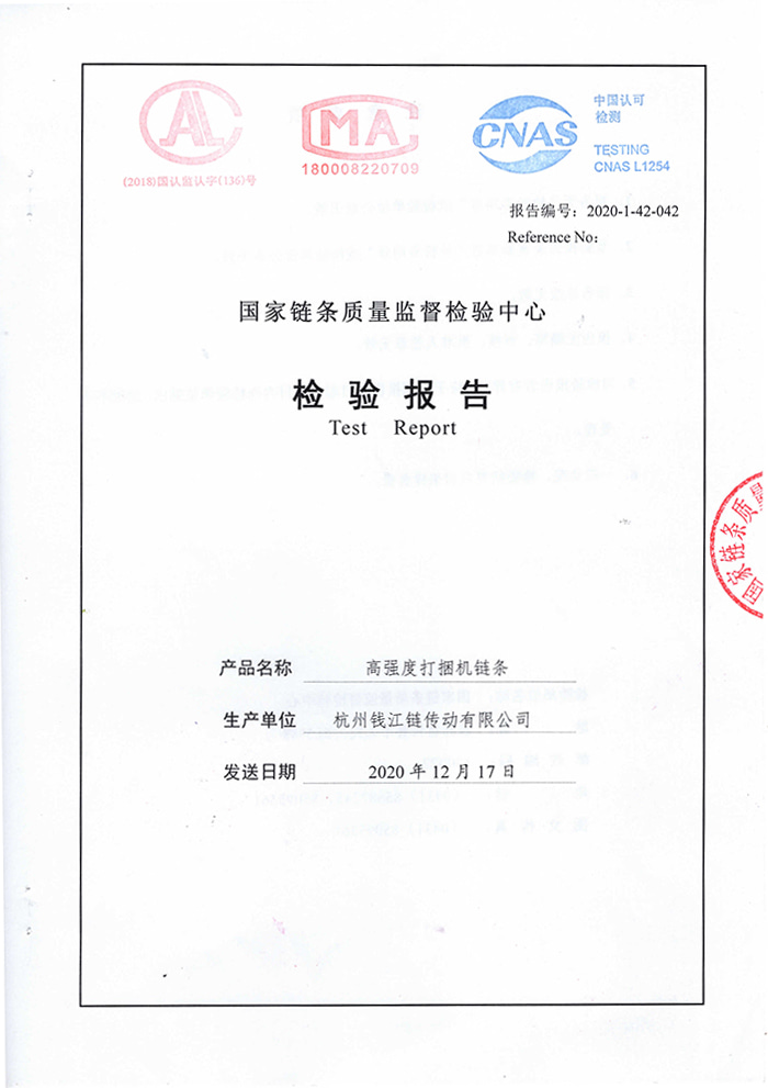 High-strength strapping machine chain inspection report 20AH-1