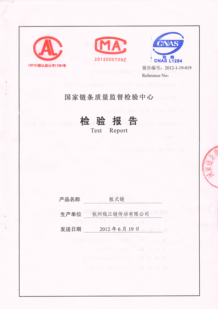 LH16 Plate chain quality inspection report